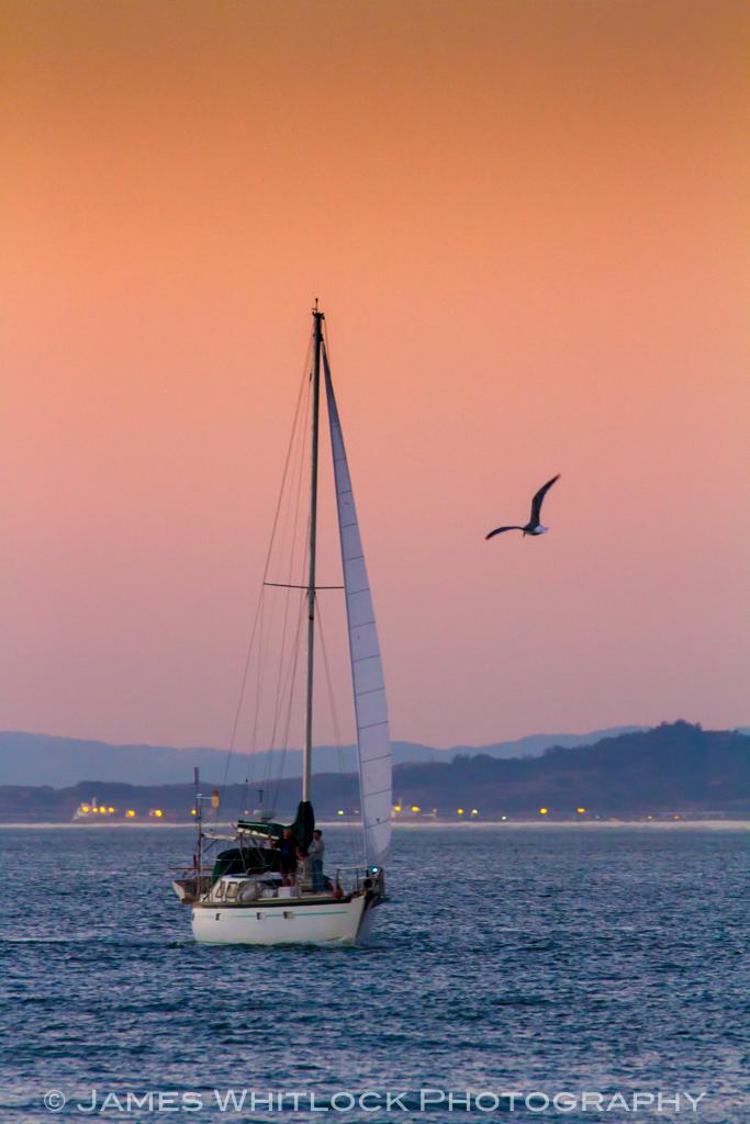 Sailing Orange 2
