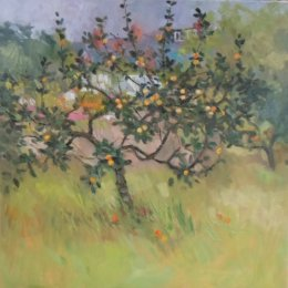 Apple Tree 02