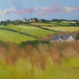 Pembrokeshire Fields 01