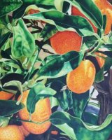 'Lorraine's Oranges