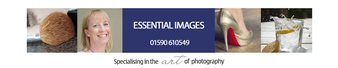 New Forest and Hampshire Photographers