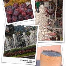 travel blog funchal