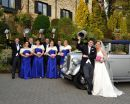 Wedding Party at Aherlow House Hotel, Tipperary.