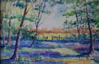 Through the Bluebell Wood <p style=