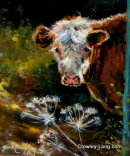 Cow Parsley (10insx12ins) €450