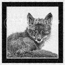 jwh BW red fox#1v3