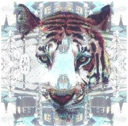 'Siberian Tiger', 2012 colour Biros and montage 20cm x 20cm