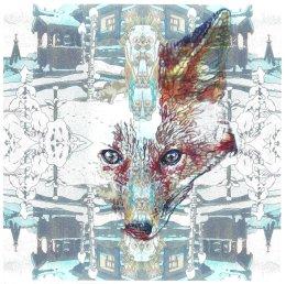 'Ice Fox', 2012 colour Biros and montage 20cm x 20cm