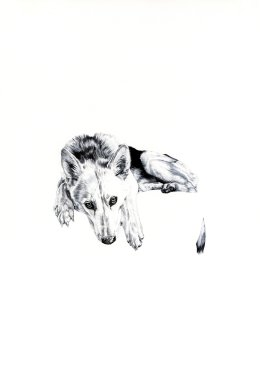'Lily', 2009 'Tales from the East' Series Black Biro Drawing 42cm x 30cm