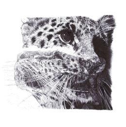 'Our Loss', Amur Leopard, 2013 Black Biro Drawing