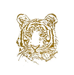 'War + Peace', Limited Edition Book, original 'Gold Tiger' drawing in each copy
