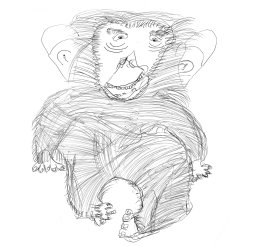 'Chimpanzee', black Biro drawing, 8 year old Scottish student 'Drawing for Endangered Species'