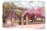 Blossom at Halifax Minster
