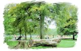 Wellholme Park, Brighouse - 2014 calendar
