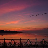 Ryde Pier at Dusk with Birds