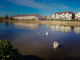 Emsworth Swans