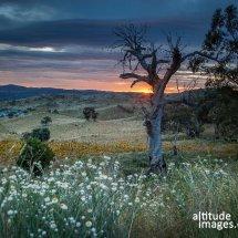 IMG 6019(Jindabyne Sunrise 2)