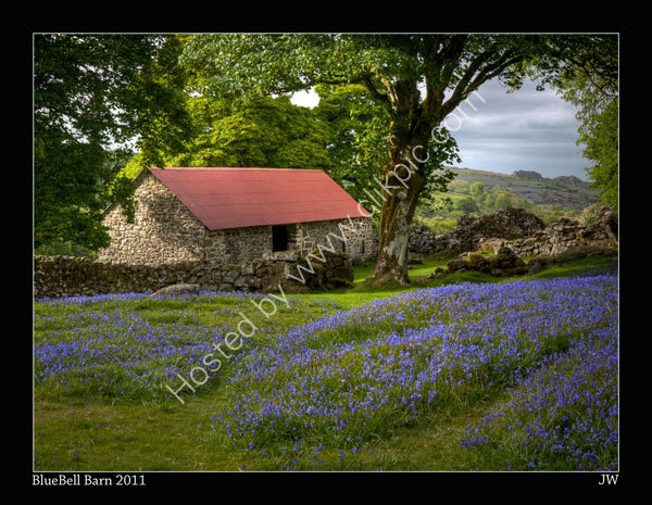 BLUEBELL-BARN-2011-600