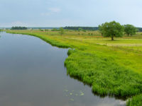River Narev