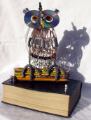 WWW.Wise Owl Eco trophy commission