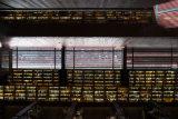 Sofia Museum Library, Madrid