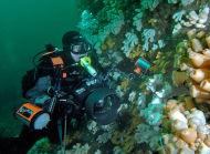 My underwater camera equipment