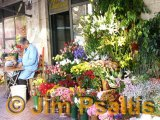 Athens Flower Stall