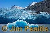 Glacier_Bay_Bergs