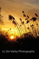 Billingshurst Sunset