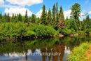 Algonquin National Park