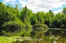 Gatineau Park, Quebec