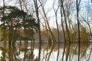 Pulborough Flood Plains 2015