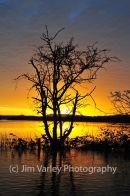 Pulborough Floods At Sunrise