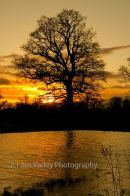 Newbridge Sunset