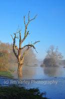 Newbridge Floods 2013