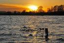 Flooded Fields At Sundown