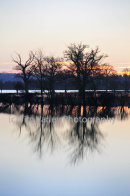 Pulborough Floods At Dawn