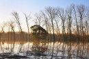 Stopham Floods At Dawn