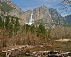 Yosemite National Park, California 4994