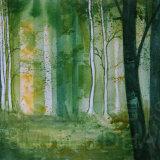 Green Birch Wood
