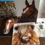 Any 6 cards - £12.30 (delivery included)