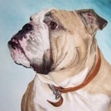 """""""I absolutely love Buddy's painting, it's amazing. Thank you so much."""""""
