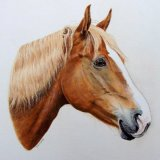 """""""Joan it's Brilliant. It will take pride of place on our walls, a lovely reminder of a super horse - Thank you."""""""