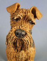 Airedale 2012