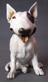 English Bull Terrier 2014