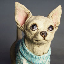 Chihuahua in woolly jumper! 2016
