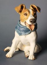 Jack Russell 2012