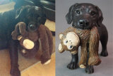 Lola & Monkey!