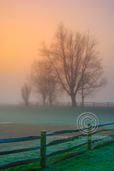 Foggy sunrise Sussex with wooden gate