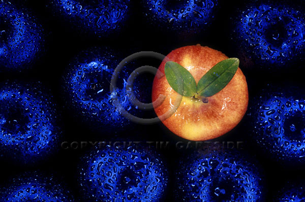 red on blue apples